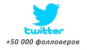 Накрутка +50 000 фолловеров в Twitter